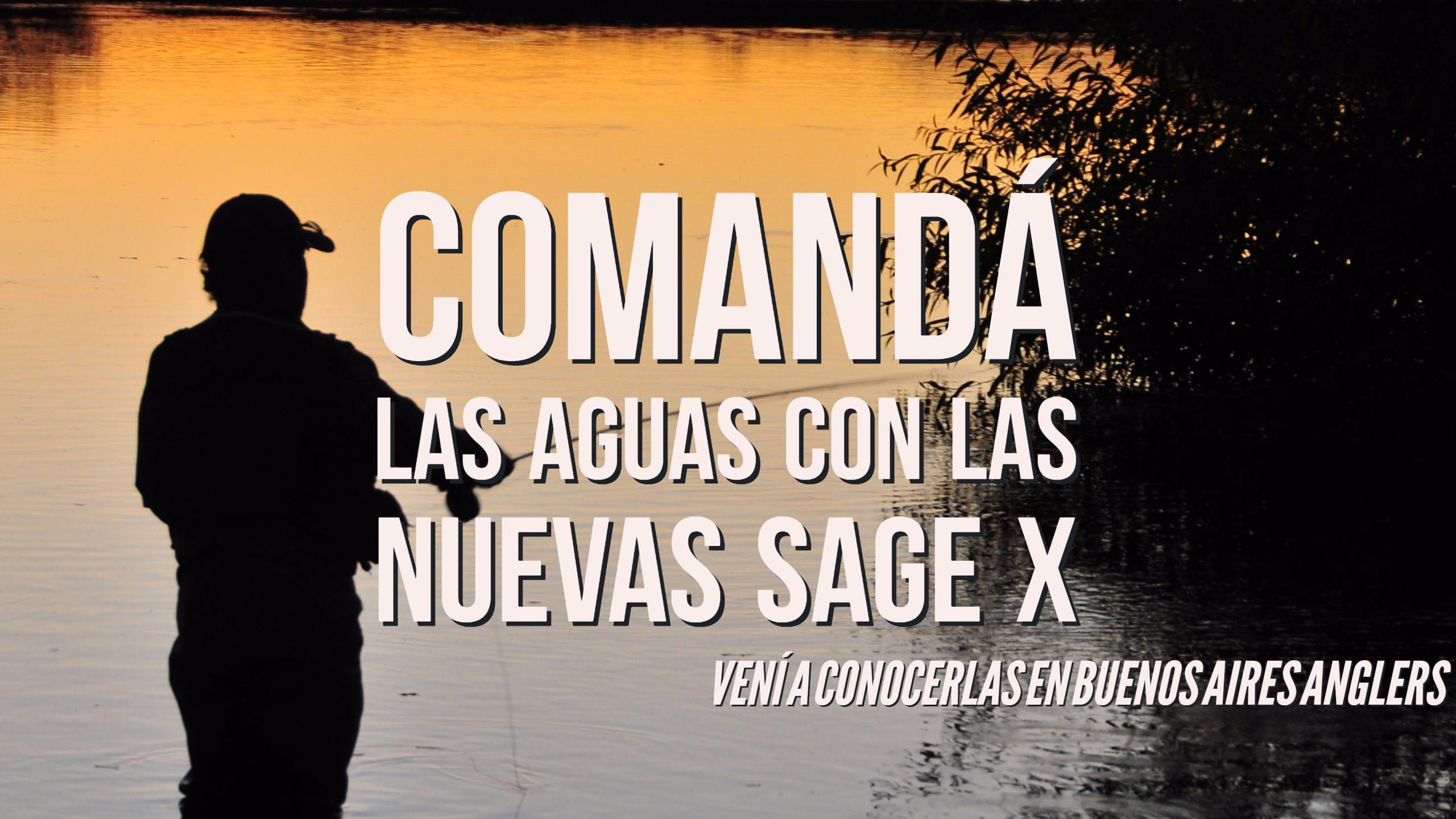 Sage X Ad
