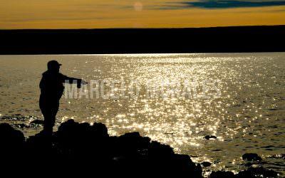 Clínica: El arte y la ciencia de pescar un lago con mosca