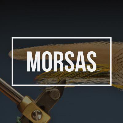 Morsas