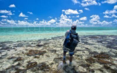Vadeando en Busca de Bonefish